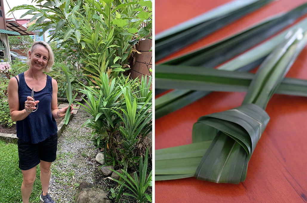 You will harvest pandan leaves from our garden to make natural colouring
